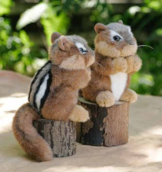 Stuffed Animal House - Chipmunk ch01